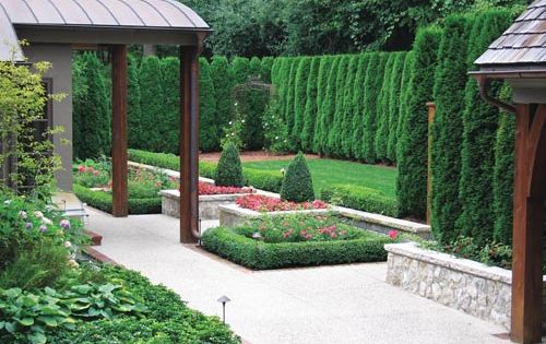 Arborvitae hedge lots of green fences and screens pinterest fence ideas fencing and - Green fencing ideas ...