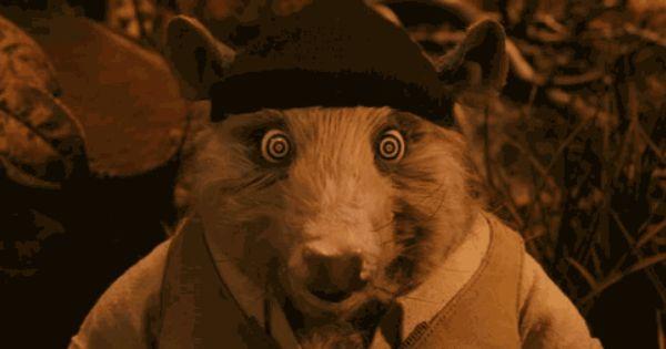 Fuckyeahfantasticmrfox Fantastic Mr Fox Wes Anderson Wes Anderson Films