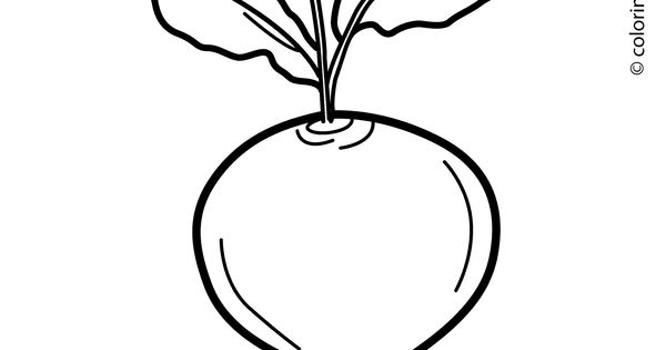 Beet vegetable coloring page for