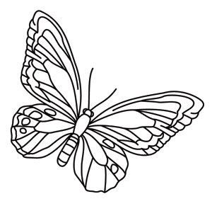 Flying Paper Butterfly See Enclosed Video to See the Buttflies Fly!