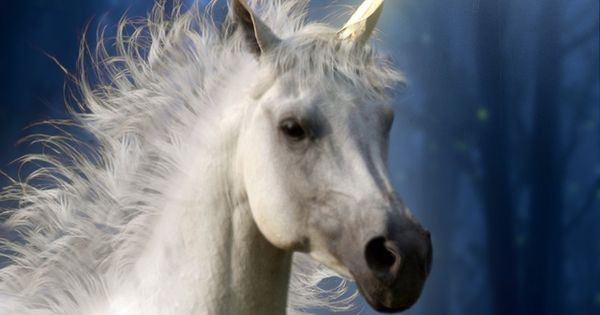 """Unicorns In The Bible: """"""""Wherever They May Have Come From, And Wherever"""