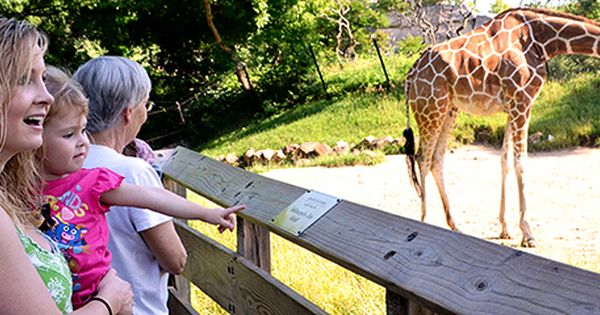 Plan A Visit To The Indianapolis Zoo Indianapolis Zoo Indianapolis Zoo Chicago Travel Indianapolis