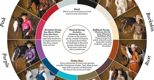 Hobby horse winning colors color wheel queenin pinterest more horse show clothes charts - Show color wheel ...