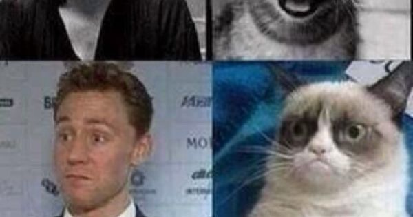 Via twitter. First it was Cumberbatch and the Otter, now ...