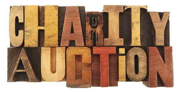 Fundraising auction tips meet greet thank stains for Auction advice