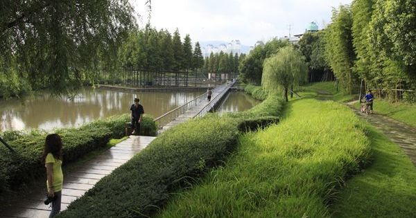 The Floating Gardens Yongning River Park Taizhou City Zhejiang Province China By Turenscape Public Space Pinterest River Park Rivers