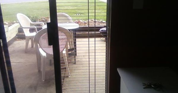How To Keep Cat From Climbing Up Patio Door Screen