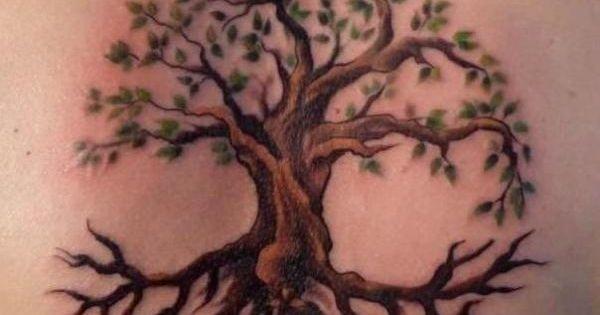 Quelle Est La Signification Des Tatouages D 39 Arbre Les Arbres Son Des Images Tr S R Currentes