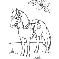 55 Best Horse Coloring Pages Your Toddler Will Love To Color ...