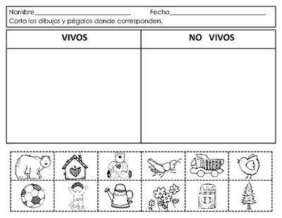 Spanish Living And Nonliving Seres Vivos Y No Vivos From Mrs G Dual Language On Teache Clasificacion De Seres Vivos Seres Vivos E Inertes Ciencia Preescolar