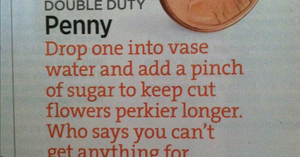 Keep flowers fresh longer: a penny + a pinch of sugar in