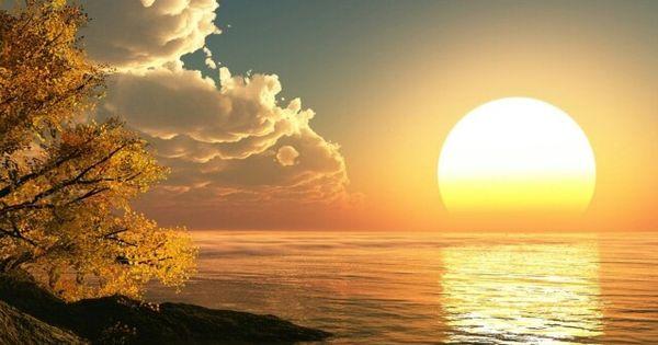 sunrise essay
