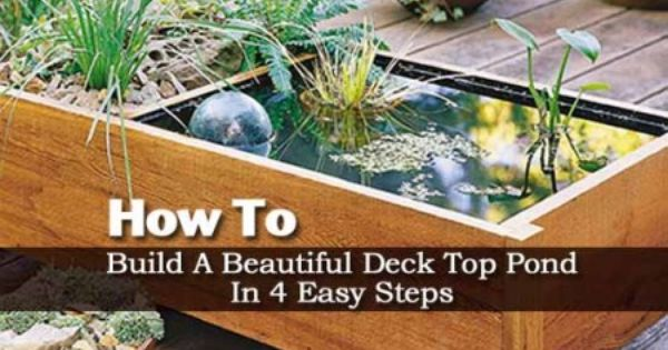 How to build an deck top pond in 4 easy steps decking for Above ground pond