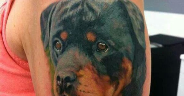 awesome tattoo rottweiler pinterest awesome tattoos awesome and tattoos and body art. Black Bedroom Furniture Sets. Home Design Ideas