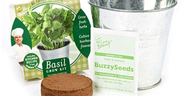 Buzzy Garden Chef Herb Grow Kits At Big Lots Grow Kit Big Lots Herbs