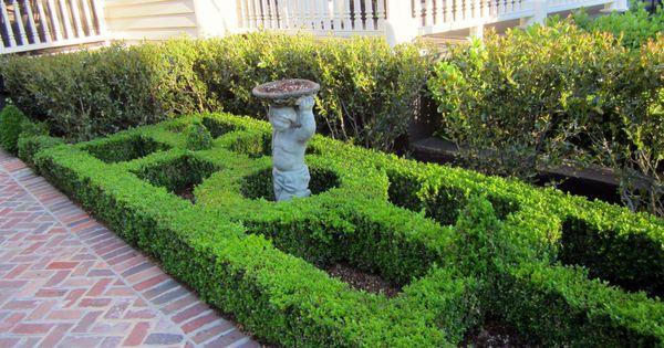 Knot garden in charleston garden ideas pinterest for Knot garden design ideas
