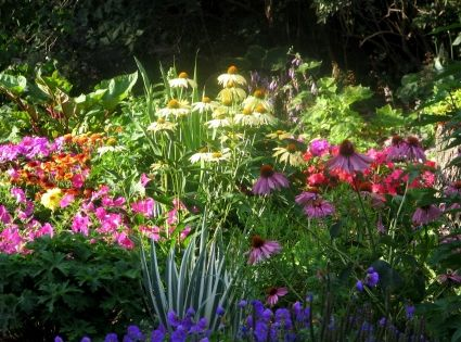 A Perennial Flower Bed With Plants That Bloom In Each Of
