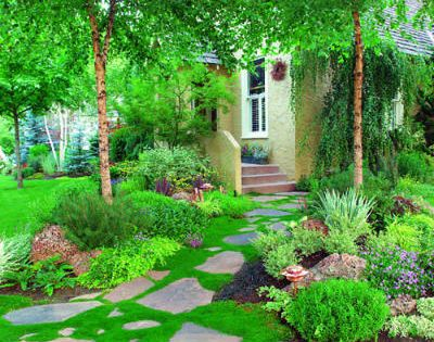 50+ landscaping ideas with stone | Storybook setting | Sunset.com Irish moss