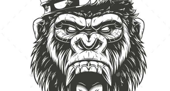Ferocious Gorilla Head Vector Eps Download Https