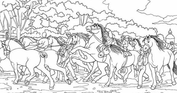 group of horses coloring page  adult coloring horses