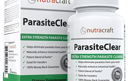 Parasites Like Human Intestinal Worms Are A Far More