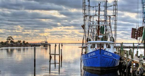 Blue themes themes pensacola florida and water reflections for Commercial fishing florida