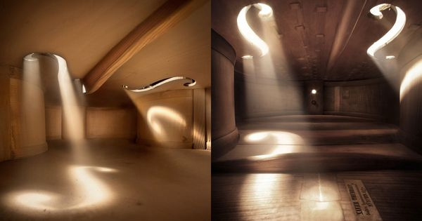 The inside of a violin. Would make a beautiful living space!