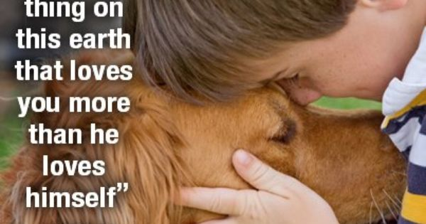 This is so true... Dogs are the best friend any person could