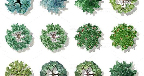 Photoshop Bitki Planlari Ile Ilgili Gorsel Sonucu