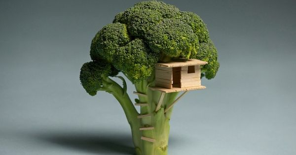 """Broccoli House"" (Broccoli Tree + Wooden Treehouse) | Brock Davis (Laser Bread),"