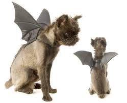 Bat Wings Dog Cat Pet Halloween Costume Gothic Comfortable