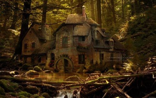 Old Mill, Black Forest, Germany.This place, the food, the history, the people....it's a magical step back into time.