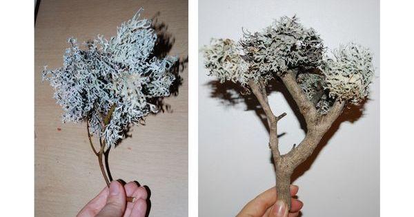 tuto pour faire des arbres pour la cr che no l et cr che. Black Bedroom Furniture Sets. Home Design Ideas