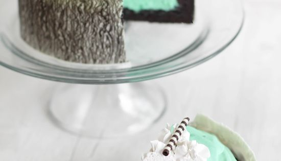 Mint white chocolate mouse cake