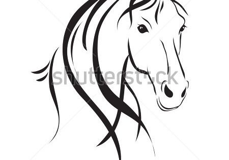 Line drawing of a horse's head on a white background by SveslaTasla,