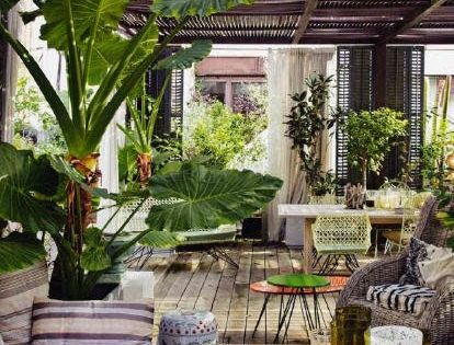 DREAM PATIO Outdoor Living