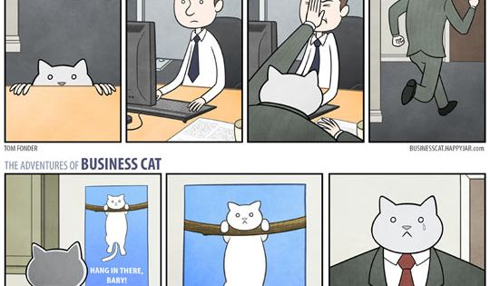 Business Cat LMAO cat lover comics funny