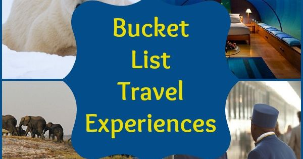 Poloar bears, african safaris & more. What's on your travel bucket list?