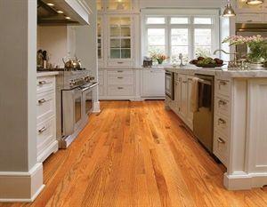 Shaw Floors Golden Opportunity Red Oak Butterscotch 2 1 4 Smooth Solid Red Oak Hardwood Floor Oak Floor Kitchen Red Oak Hardwood Floors Red Oak Floors