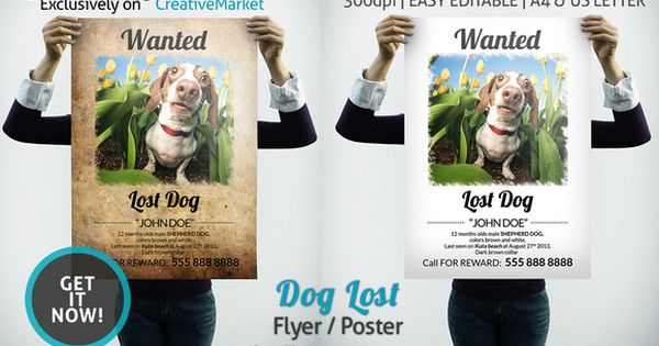 Dog Lost Flyer Poster Shops, Lost and Cats - lost pet poster template