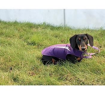 Cascade Dog Coat Plum Purple Keep Your Pooch Warm And Dry With This Essential Cascade Dog Coat In Plum Purple By Rc Pet Wa Dog Coats Dog Summer Clothes Dogs