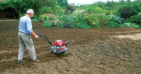 Gazon les 5 tapes pour refaire sa pelouse s cheresse pelouse et gazon - Refaire sa pelouse ...