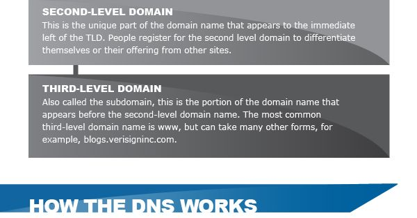 DNS 101 [INFOGRAPHIC] | Infographics (Internet ...