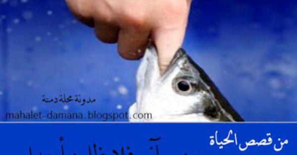 مدونة محلة دمنة من أجمل القصص عن نهاية الظلم Fish Pet Blog Fish