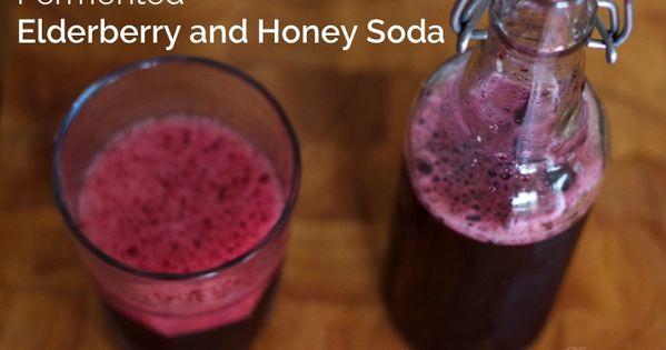Fermented Elderberry and Honey Soda | Recipe | Homemade, Grandmothers ...