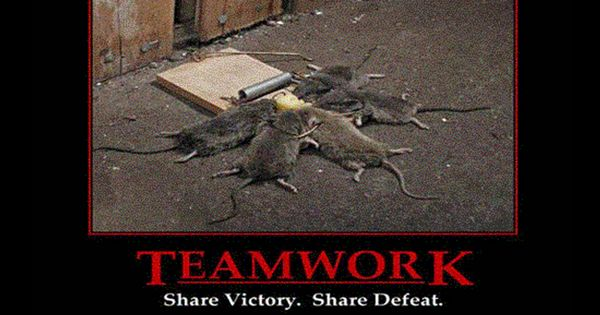 Teamwork Share Victory Share Defeat Demotivational