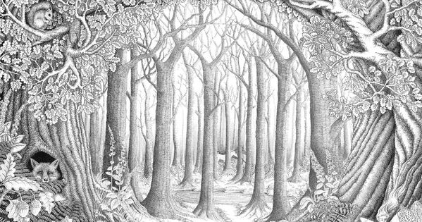 Adult coloring pages forest ~ Enchanted forest by ellfi.deviantart.com on @deviantART ...