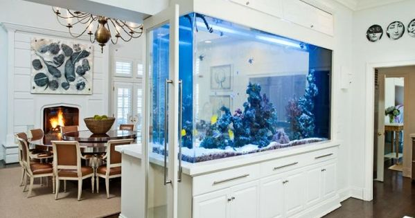 aquarium ideen einrichtung blaue lampen raumteiler eingebaut our dream house pinterest. Black Bedroom Furniture Sets. Home Design Ideas