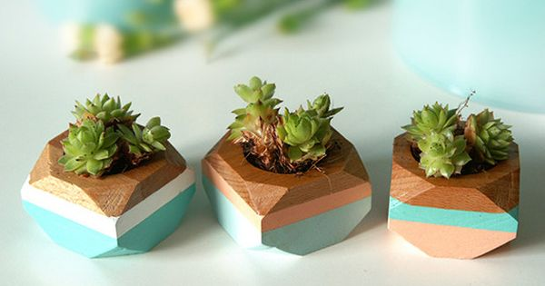 20 geeky finds for your cubicle cubicles planters and desks - Cubicle planters ...