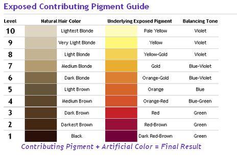 Pin By M I S S R E N A E On Be You Tiful Hair Color Wheel Hair Levels Matrix Hair Color